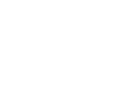 Sirius Group logo