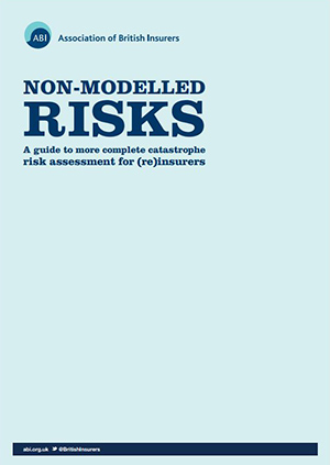 Non-Modelled Risks guide
