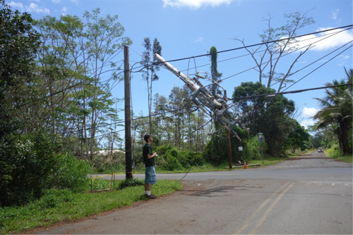 Iselle damage to a telephone pole